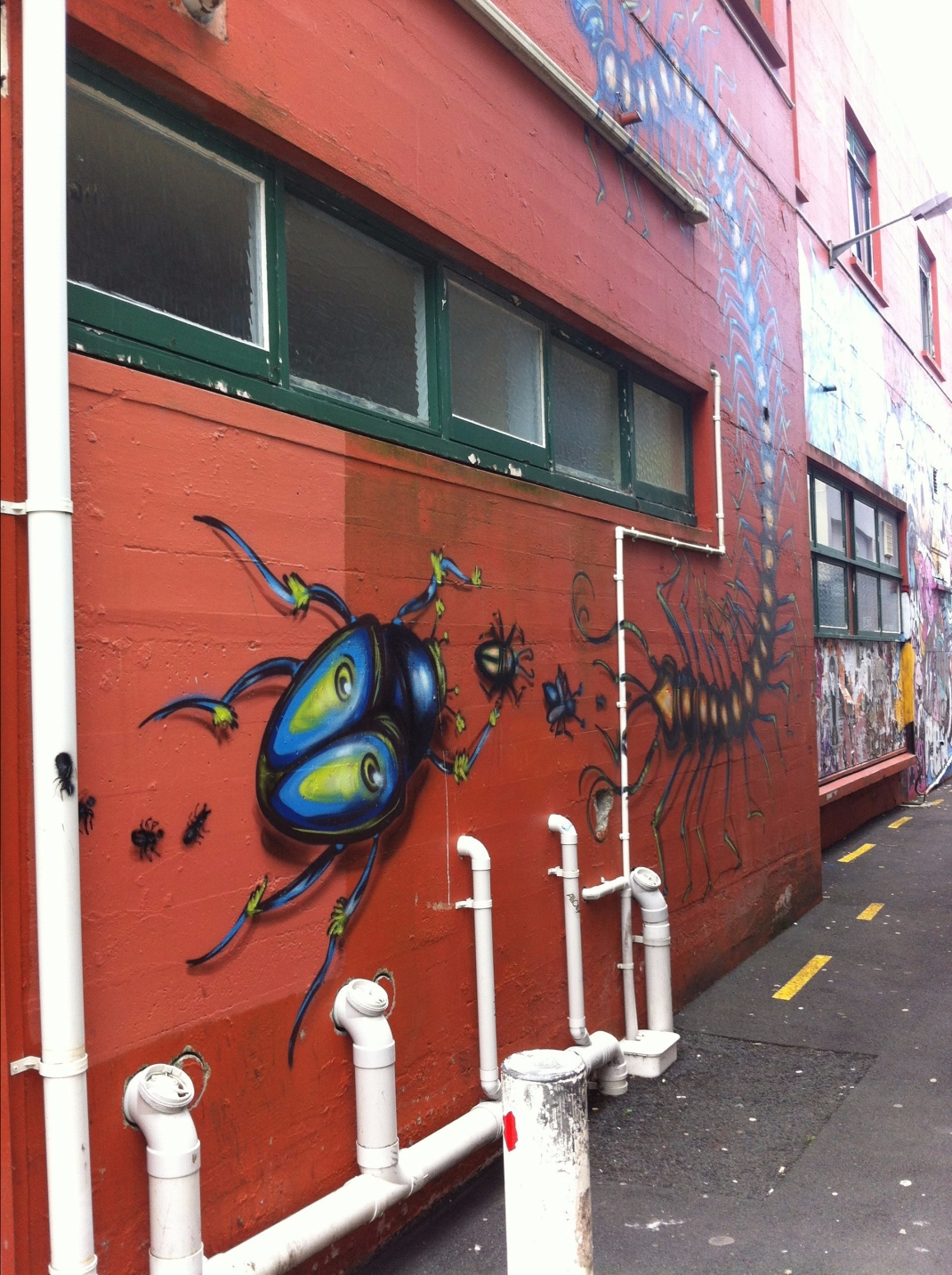 New Plymouth mural - artist unknown